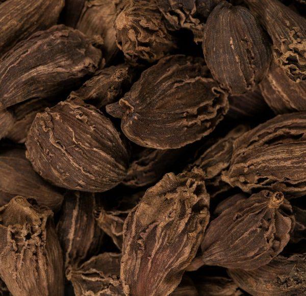 close up of big cardamon black pods