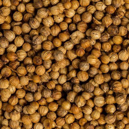whole organic coriander best quality