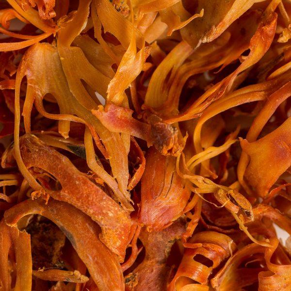 whole mace dried organic