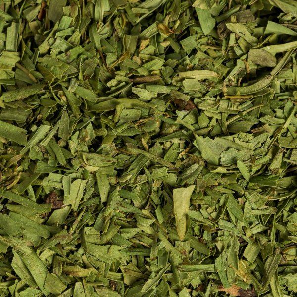 close up green dried tarragon organic