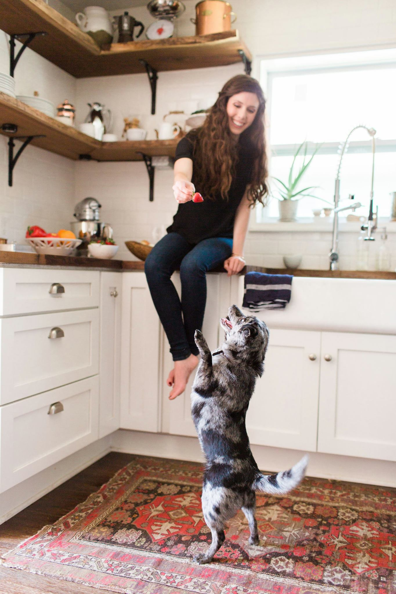 Kate and dog food blog